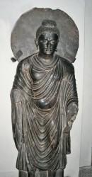 Buddha in Peshawar Museum