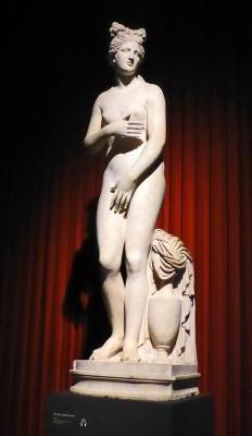 Capitoline Venus 0633